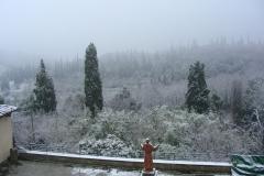 Mănăstire Sargiano - Claustru